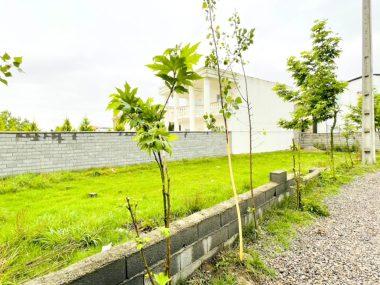 فروش زمین در شمال محمودآباد-۴۸۸۸۸