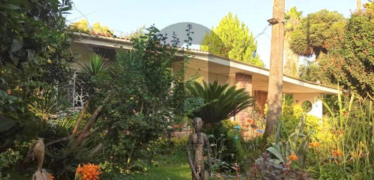 فروش باغ ویلا در شمال نوشهر-۵۲۵۶۴