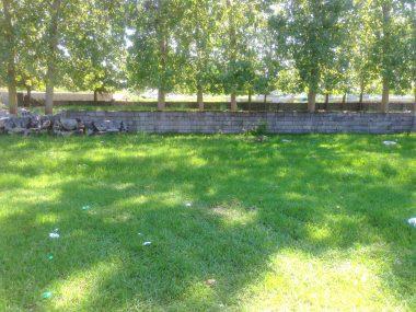 خرید زمین در شمال ایزدشهر-۲۴۰۸۴