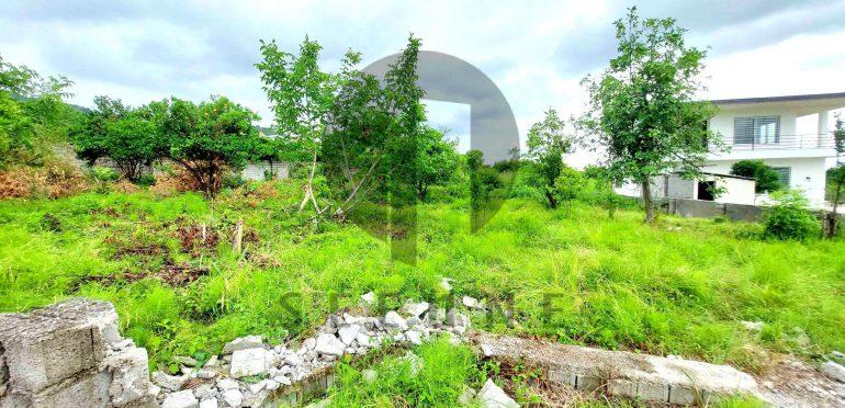 خرید زمین شهرکی در نوشهر-۵۴۳۲۱