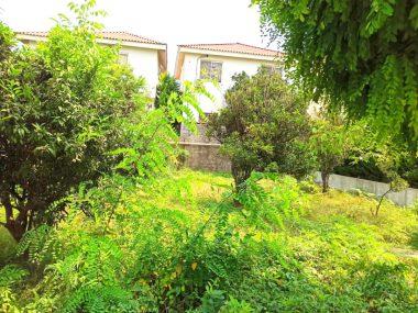 فروش زمین شهرکی در رویان ونوش-۵۴۸۳۷