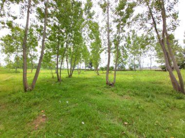 خرید زمین در شمال محمودآباد-۵۳۶۹۹
