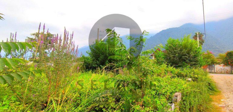 فروش زمین در شمال نوشهر چلک-۵۵۹۱۴