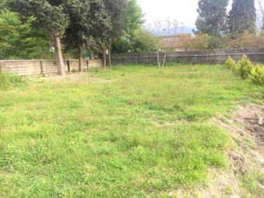 فروش زمین شهرکی در رویان ونوش-۵۲۶۹۵