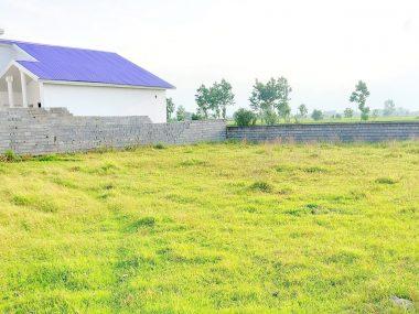 خرید زمین در شمال املاک سیوان-۵۶۶۴۵