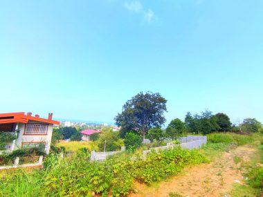 خرید زمین در شمال املاک سیوان-۵۶۷۶۰
