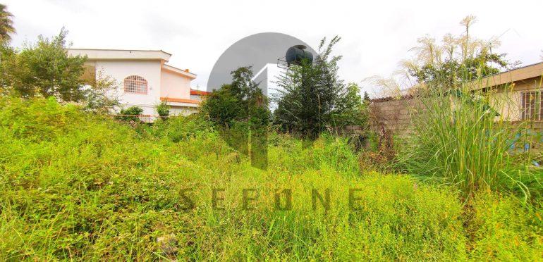 فروش زمین در شمال املاک سیوان-۵۷۱۷۵