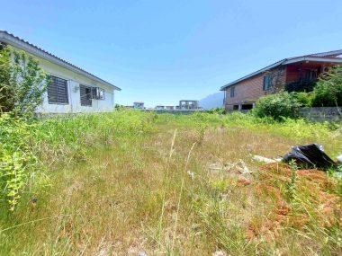 خرید زمین در شمال املاک سیوان-۵۲۵۳۷
