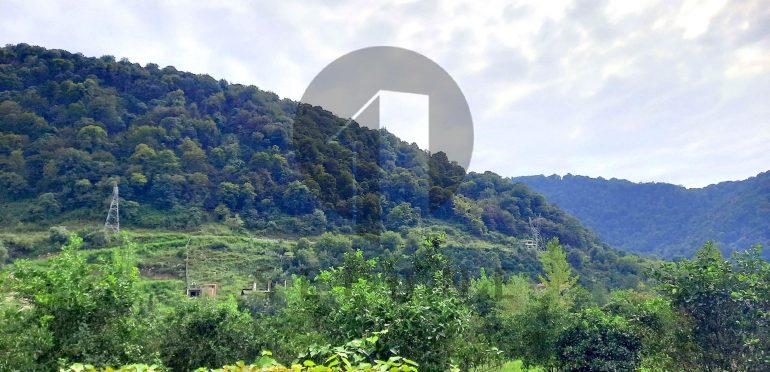 خرید زمین در شمال املاک سیوان-۵۷۴۷۹