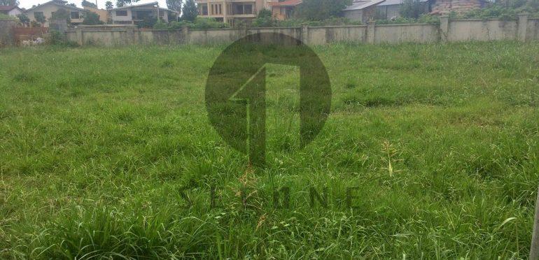 خرید زمین در شمال املاک سیوان-۲۳۲۸۳