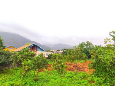 فروش زمین در نوشهر املاک سیوان-۵۶۹۱۹